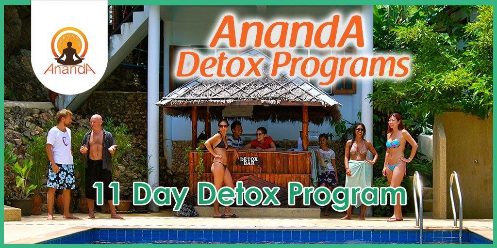11 Day Detox Program