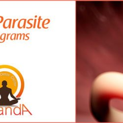 Anti-Parasite Program